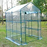 Outsunny 5x5x6 Portable Walk In Garden Steeple Greenhouse