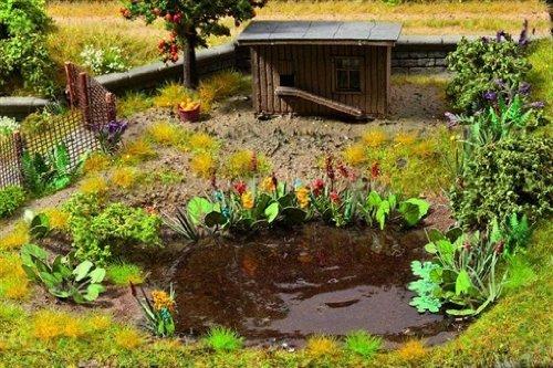 Noch-14052-Wasser-und-Uferpflanzen