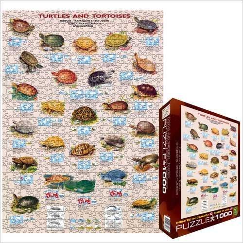 Cheap Eurographics Turtles & Tortoises 1000 Piece Jigsaw Puzzle Eurographics (B0039ZAND2)