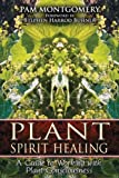 img - for Plant Spirit Healing: A Guide to Working with Plant Consciousness book / textbook / text book
