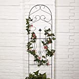 Amagabeli Wrought Iron Fleur De Lis Garden Trellis, 60 Inch Height, 18 Inch Width, Black