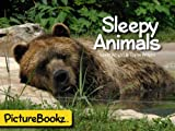 img - for Sleepy Animals (PictureBookz Series) book / textbook / text book
