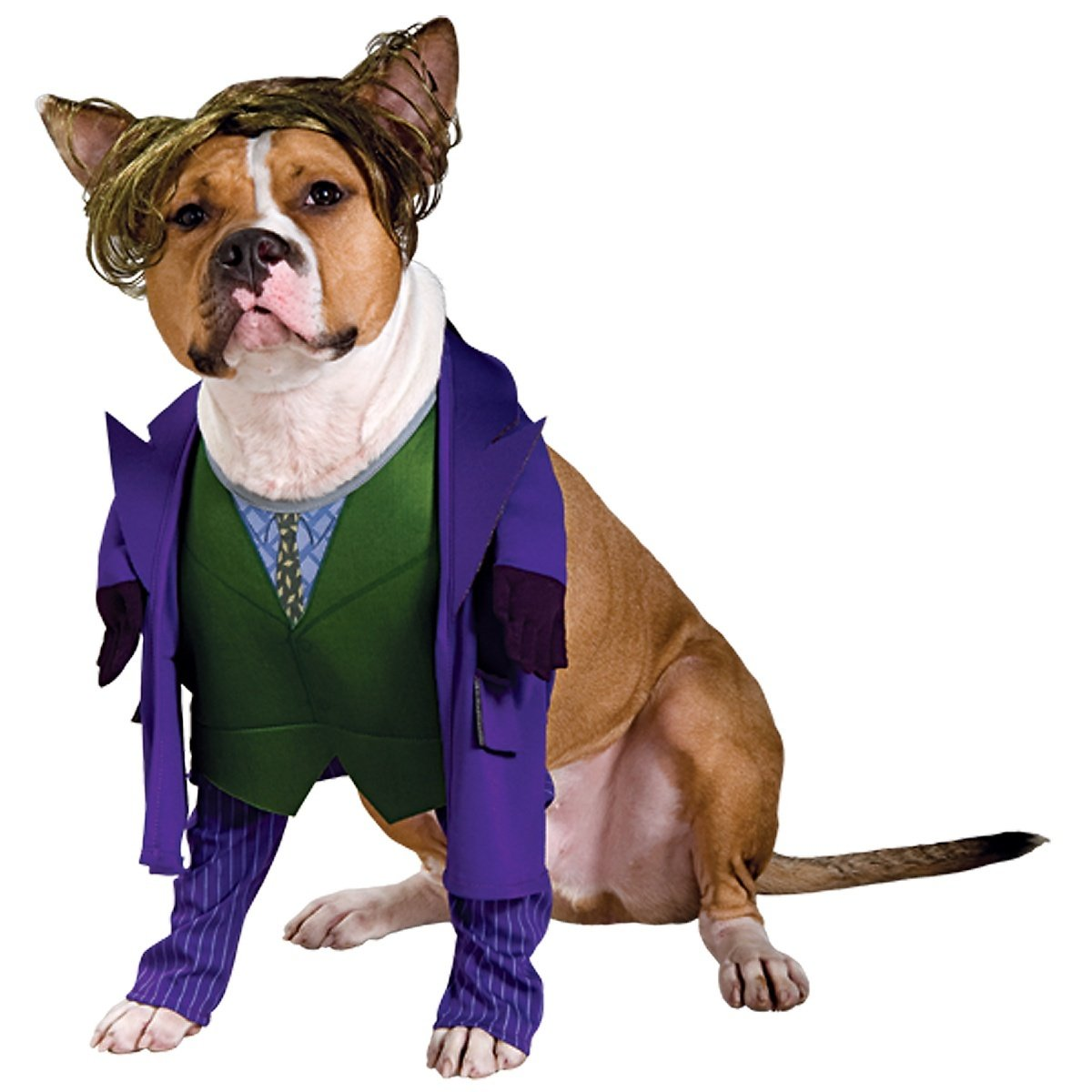 large dog halloween costumes super hero