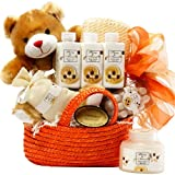Art of Appreciation Gift Baskets Honey Bear Spa Bath and Body Gift Set