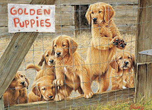 Golden Puppies 1000-Piece