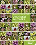 Orchid�es sauvages