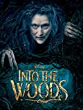 Into the Woods 1-Disc BD + Digital HD [Blu-ray]