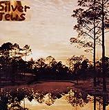 echange, troc Silver Jews - Starlite Walker