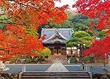 コンパクト1000ピース 修善寺—紅葉に染まる— 12-42