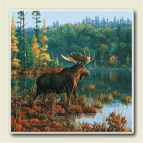 AbsorbaStone Coaster set~ Moose ~4 Tile Drink Coasters ~ code 560