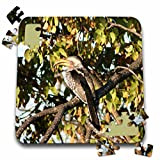 Angelique Cajams Safari Birds - South African Hornbill - 10x10 Inch Puzzle (pzl_26836_2)