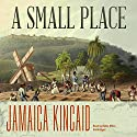 A Small Place Audiobook by Jamaica Kincaid Narrated by Robin Miles