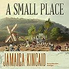 A Small Place Hörbuch von Jamaica Kincaid Gesprochen von: Robin Miles