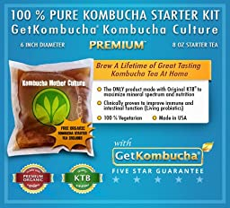 Genuine KOMBUCHA CULTURE (1 Jumbo SCOBY + 1 Cup Strong STARTER LIQUID - Makes 1 Gallon)