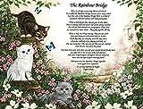 Rainbow Bridge Pet Memorial Poem For Loss of Your Beloved Cat **L@@K**