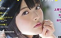 フォトテクニックデジタル 2014年 07月号 [雑誌]