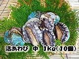活蝦夷あわび 中 1kg(10個)