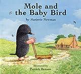 Mole and the Baby Bird