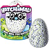 Hatchimals – Hatching Egg – Interactive Creature – Draggle – Blue/Green Egg by Spin Master