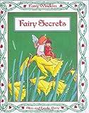 Fairy Secrets (Little Fairy Books)