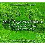 Basic Yoga Meditation CD: 3, 7, 11, and 30 Minute Guided Practices ~ Swami Jnaneshvara Bharati