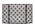 "Benzara 50377 Striking Metal Fire Screen, 48"" W x 30"" H from Benzara"