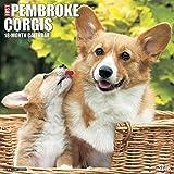 2016 Just Pembroke Corgis Wall Calendar