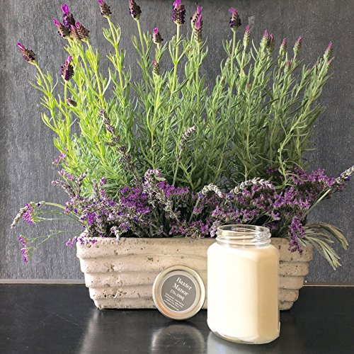 baxter-manor-clean-burning-lavender-scented-soy-candle-11oz