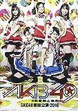 ミュージカル『AKB49~恋愛禁止条例~』SKE48単独公演 2016 [Blu-ray]