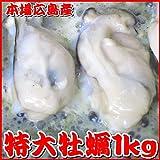 【常温商品同梱不可】広島牡蠣・特大サイズ1kg 1kg中に30粒前後入ってボリューム満点 ランキングお取り寄せ