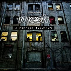 Mesh - A Perfect Solution