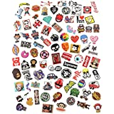 Anddas 100 Random Assorted Decal Stickers for Skateboard Snowboard Vinyl Graffiti Laptop Luggage Car Bike Bicycle