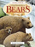img - for A Visual Introduction to Bears (Animal Watch Series) book / textbook / text book