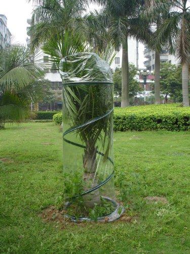 Zenport Sh3240E Portable Pop-Up Greenhouse For Small Plants/Shrubs, 6-Feet High front-96730