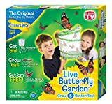 Toy - Insect Lore Butterfly Garden