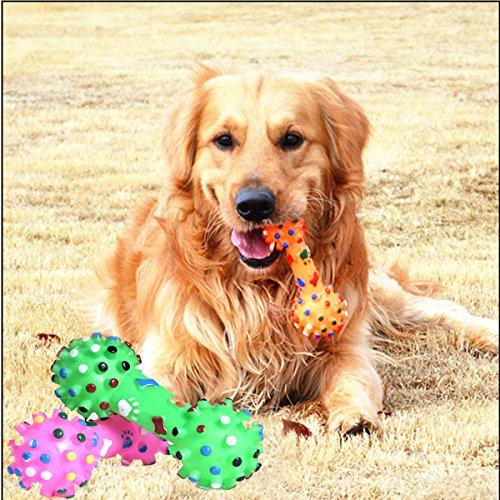 paleo-mascotas-perro-gato-de-juguete-colorido-mancuerna-de-puntos-de-huesos-animales-chirriante-sona