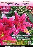 ゴージャスな八重咲百合球根 『ローズリリー・エレナ』大球×3球