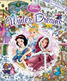 Look and Find Disney Princess Winter Dreams (Disney Princess, Look and Find)