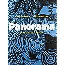 Panorama: A Foldout Book
