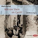 Wie ein Stein im Geröll | Maria Barbal
