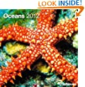 2012 Oceans Wall Calendar (English, German, French, Italian, Spanish and Dutch Edition)