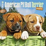 img - for American Pit Bull Terrier Puppies 2016 Square 12x12 (Multilingual Edition) book / textbook / text book