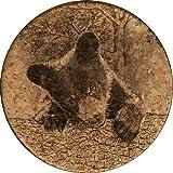 GrafixMat Coaster, Life of a Black Bear Cub, Made in the USA