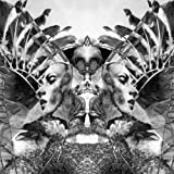 Natural Selection (w/ The B... - UNKLE