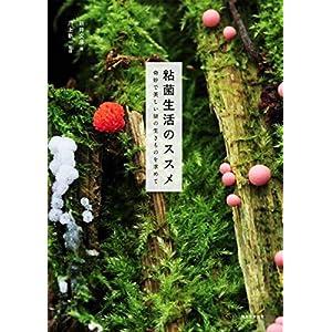 粘菌生活のススメ: 奇妙で美しい謎の生きものを求めて