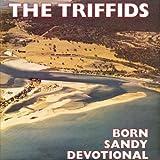 Born Sandy Devotional