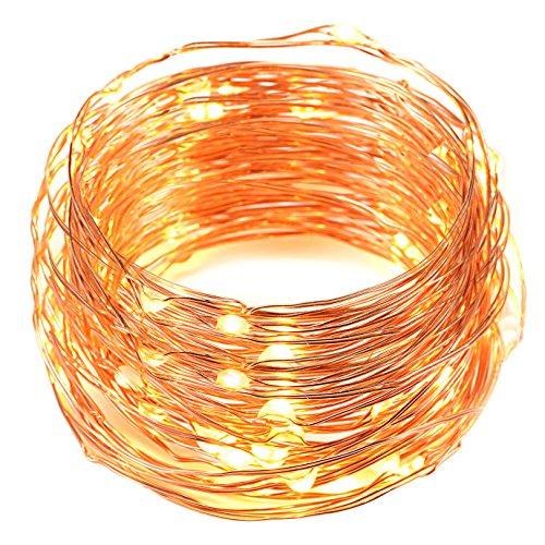 USB LED String Lights,Oak Leaf 2 Set of 60 LEDs Starry Lights Copper Wire for Home Bedroom Party Wedding Decoration (19.7ft,Warm White)