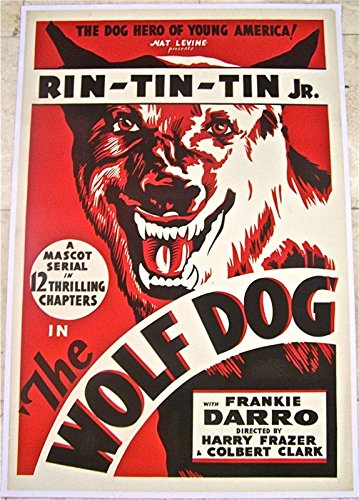 price-dropped-wolf-dog-33-nm-lb-1-sh-rin-tin-tin-jr-adventure-serial-