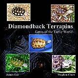 Diamondback Terrapins: Gems of the Turtle World