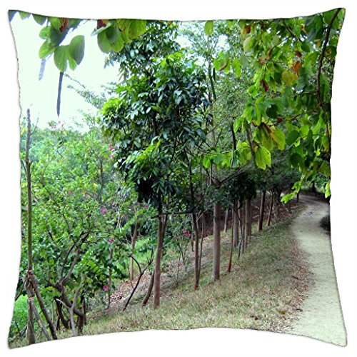 mountain-trail-throw-pillow-cover-case-18-x-18
